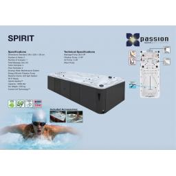 Passion Spa Swimspa Pool