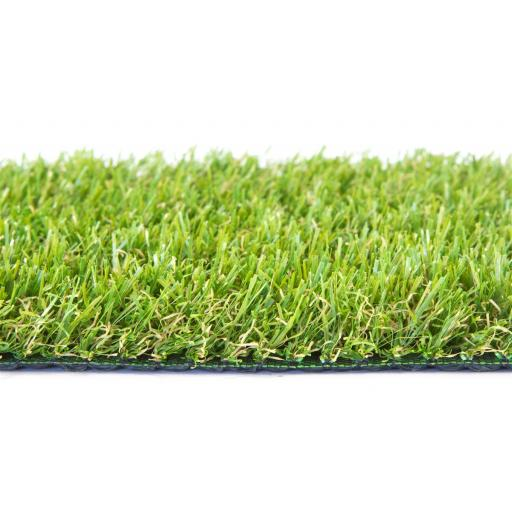 Fairway Grass